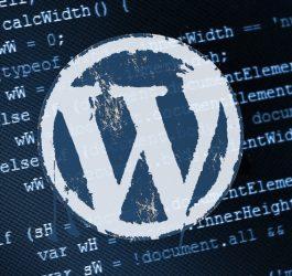 wordpress-site-hizlandirma